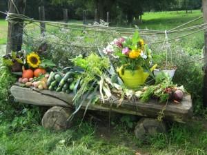 Gemüse - Alternative zu glutenhaltigen Produkten